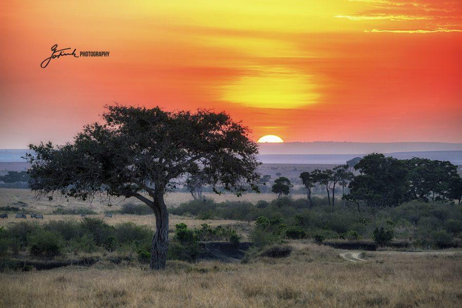 Beautiful Sundown near Malaika Camp 3793 WL